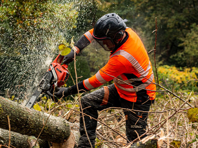 Tree CUTTING Marsfield